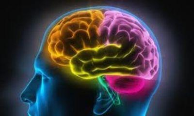 Světový den proti mozkové mrtvici